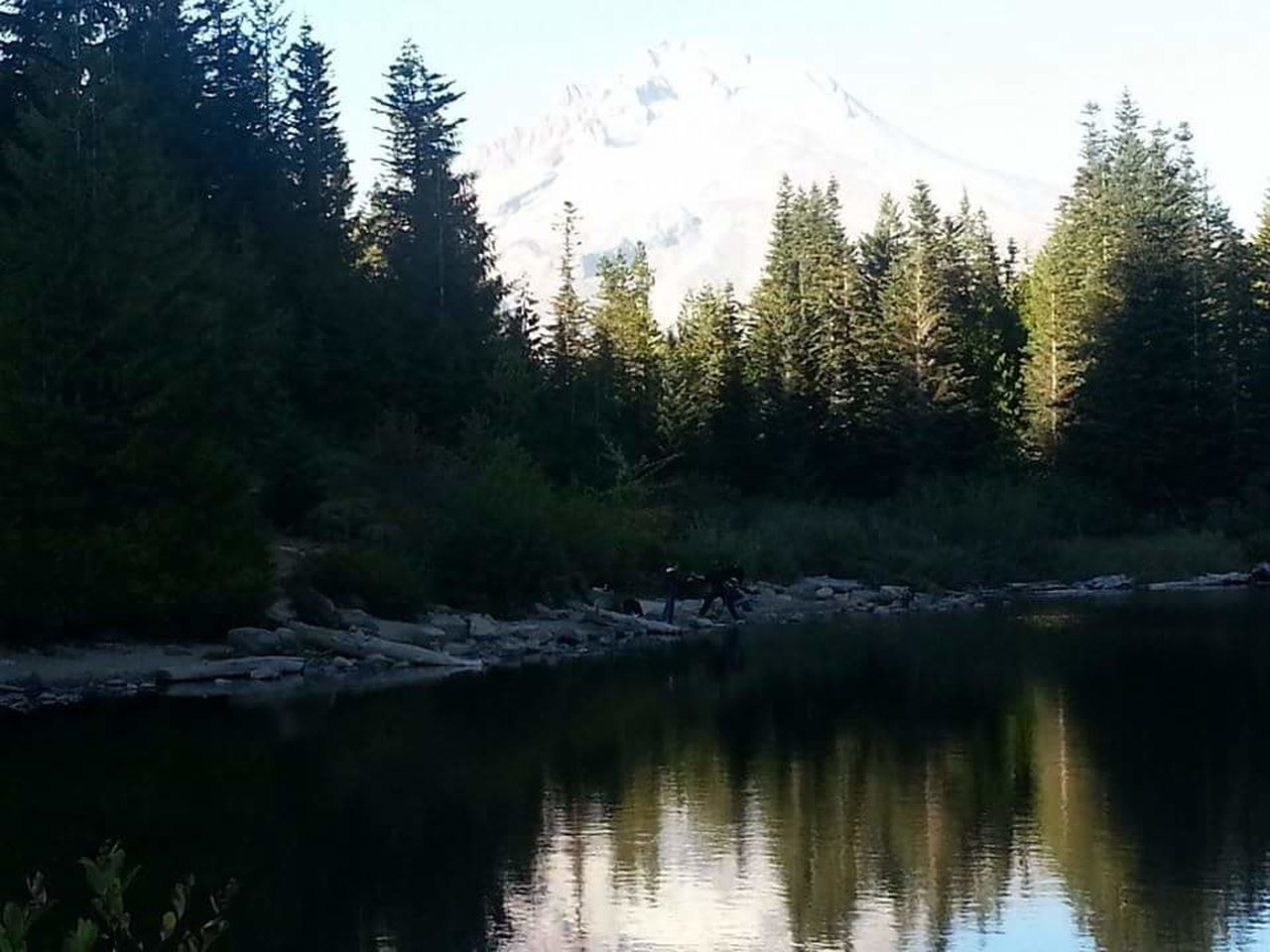 Water Nature Reflection Tree Pine Tree Pinaceae Forest Landscape Scenics Beauty In Nature Lake Sunset Sky Reflection Lake Tranquility Outdoors Cold Temperature No People Lush - Description Day Tranquility Natural Parkland Mirror Lake HIKES OUTDOOR Tranquil Scene