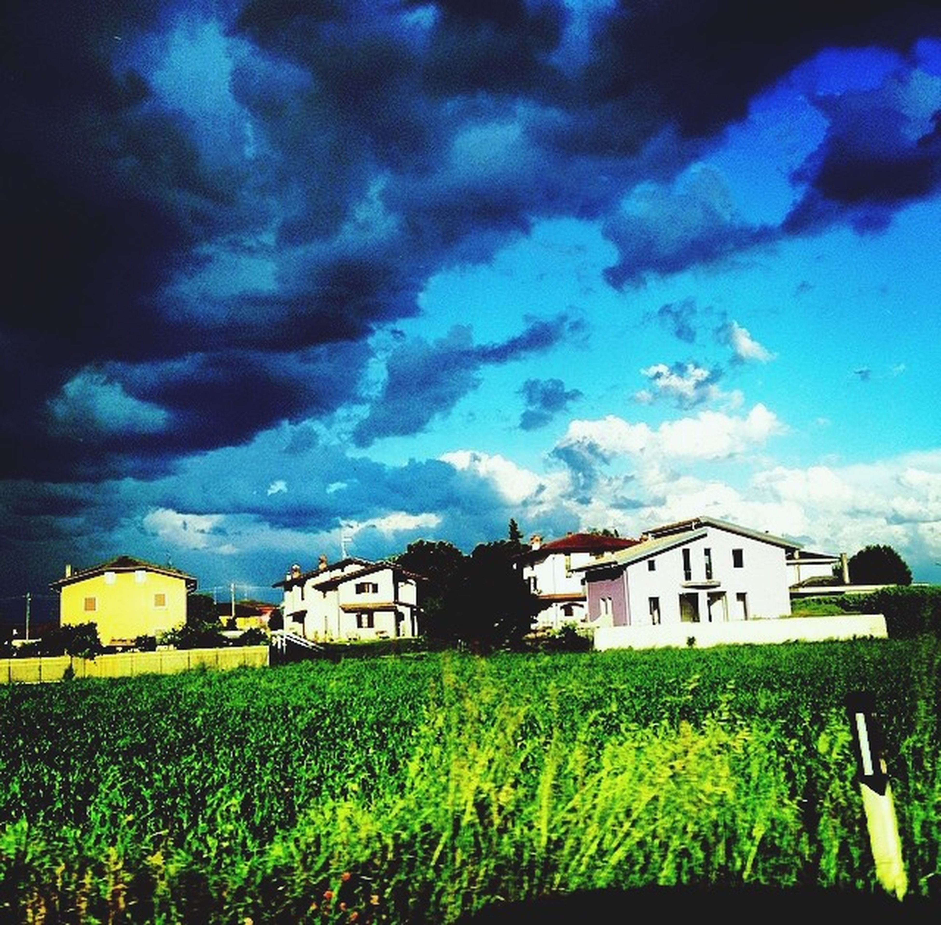 building exterior, architecture, grass, sky, built structure, field, house, cloud - sky, green color, landscape, cloudy, nature, grassy, rural scene, cloud, beauty in nature, residential structure, growth, blue, plant