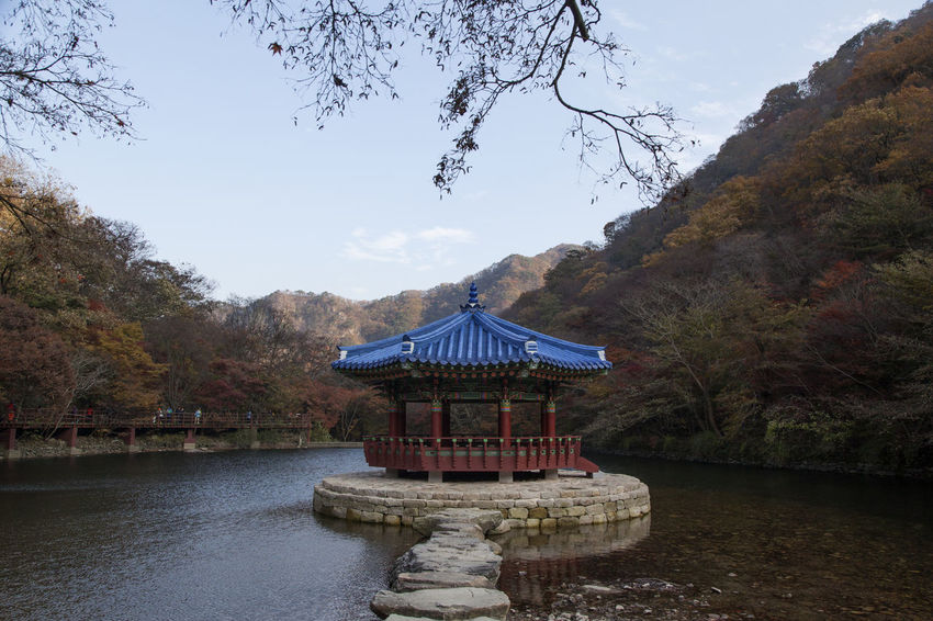 autumn landscape at Naejangsan Mountain in Jeonbuk, South Korea Autumn Autumn Colors Fall Beauty Architecture Beauty In Nature Built Structure Day Lake Lake View Mountain Nature No People Outdoors Pavilion Religion Scenics Sky Tranquil Scene Tranquility Travel Destinations Tree Water Waterfront