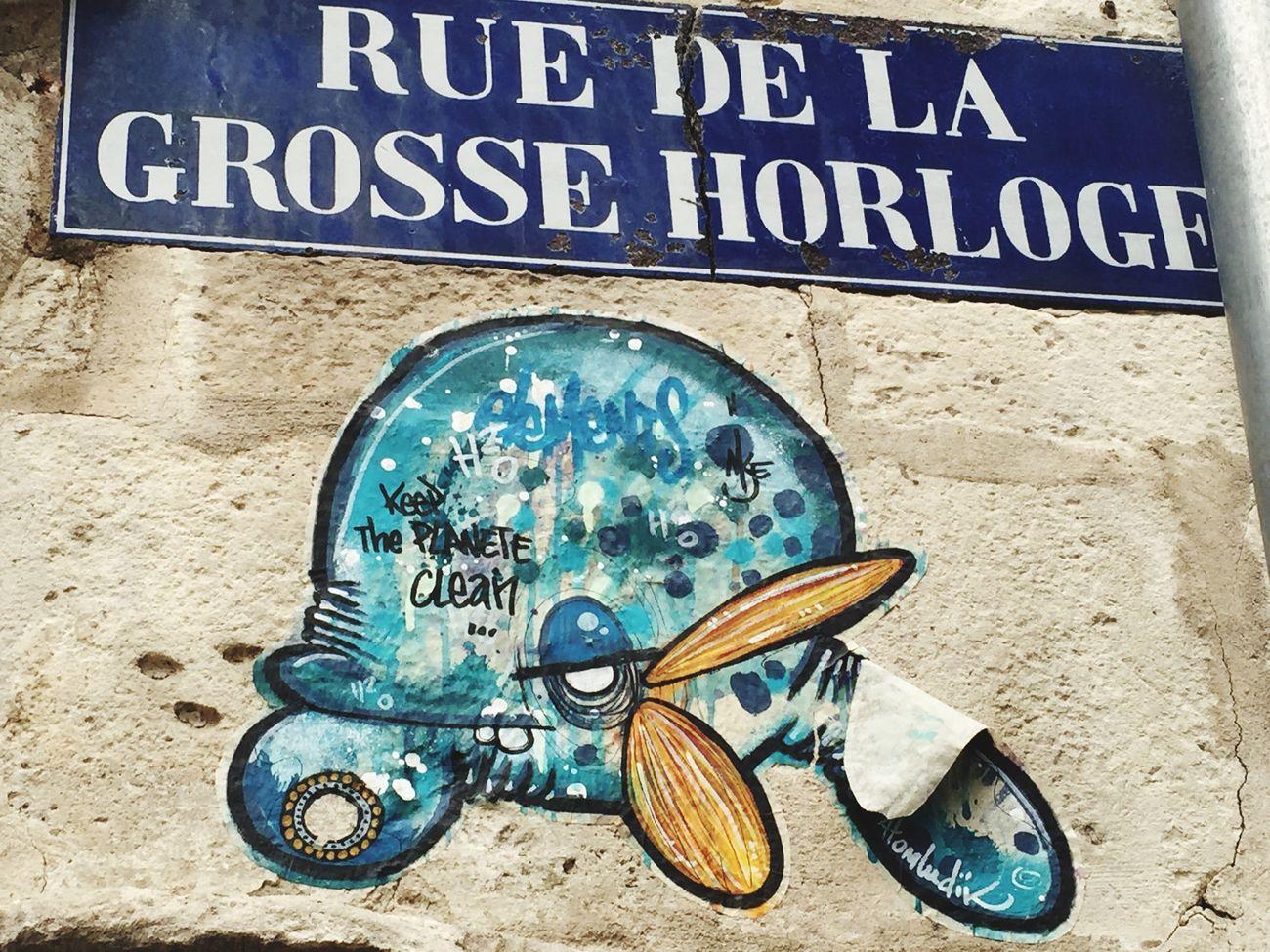 Streetphotography Whale Graffiti
