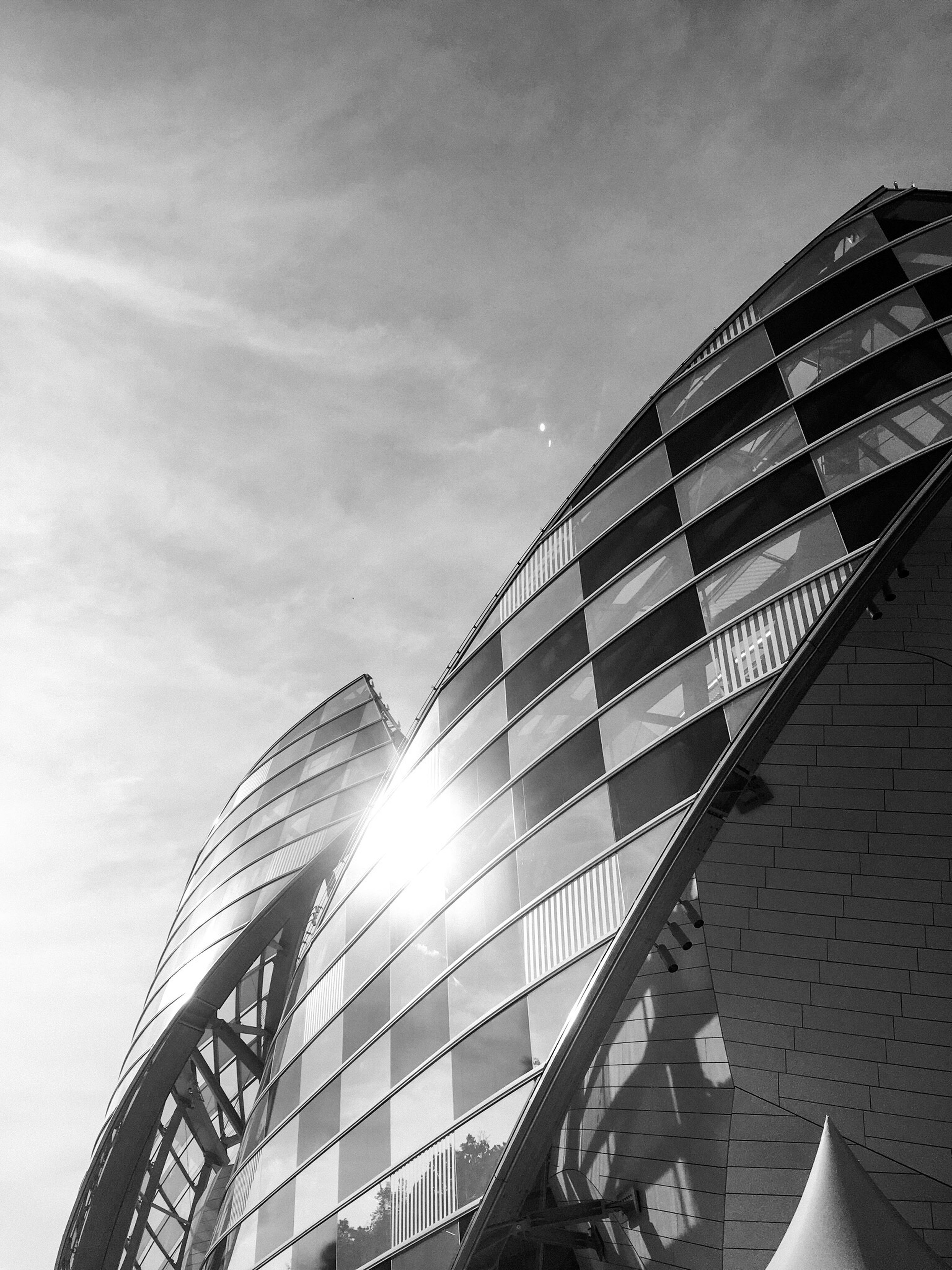 Lvf Fondation Louis Vuitton  Daniel Buren Frank Gehry Sails B&w Architecture B&w Street Photography Paris Fujifilm Fujifilm X-E2 First Eyeem Photo