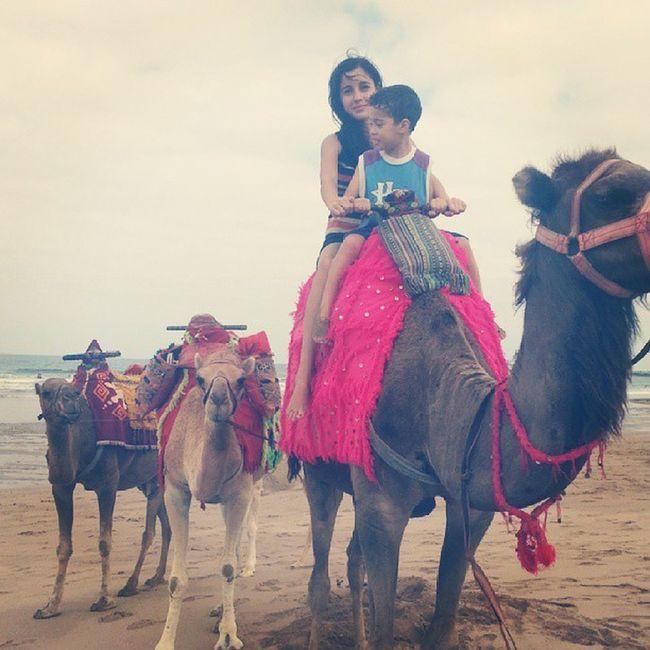 Camel Riding Fun Times Summer #beach Sky And Sea