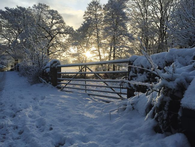 Gate to the Sun The Lake District  Grassmere Sunrise Beauty Nature