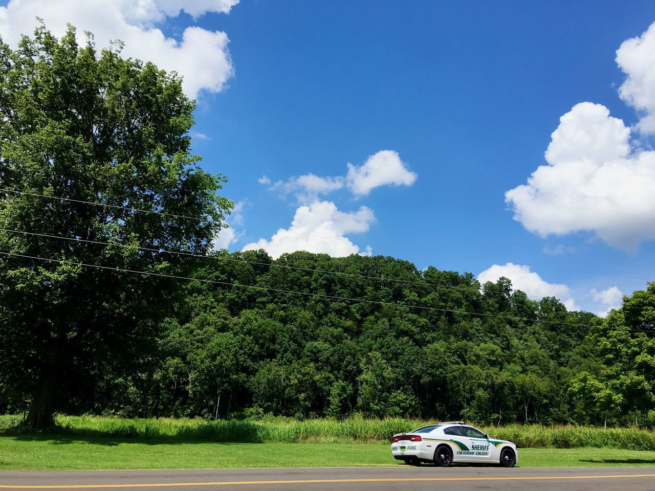 tree, sky, car, cloud - sky, land vehicle, transportation, day, field, green color, outdoors, growth, nature, grass, no people, beauty in nature