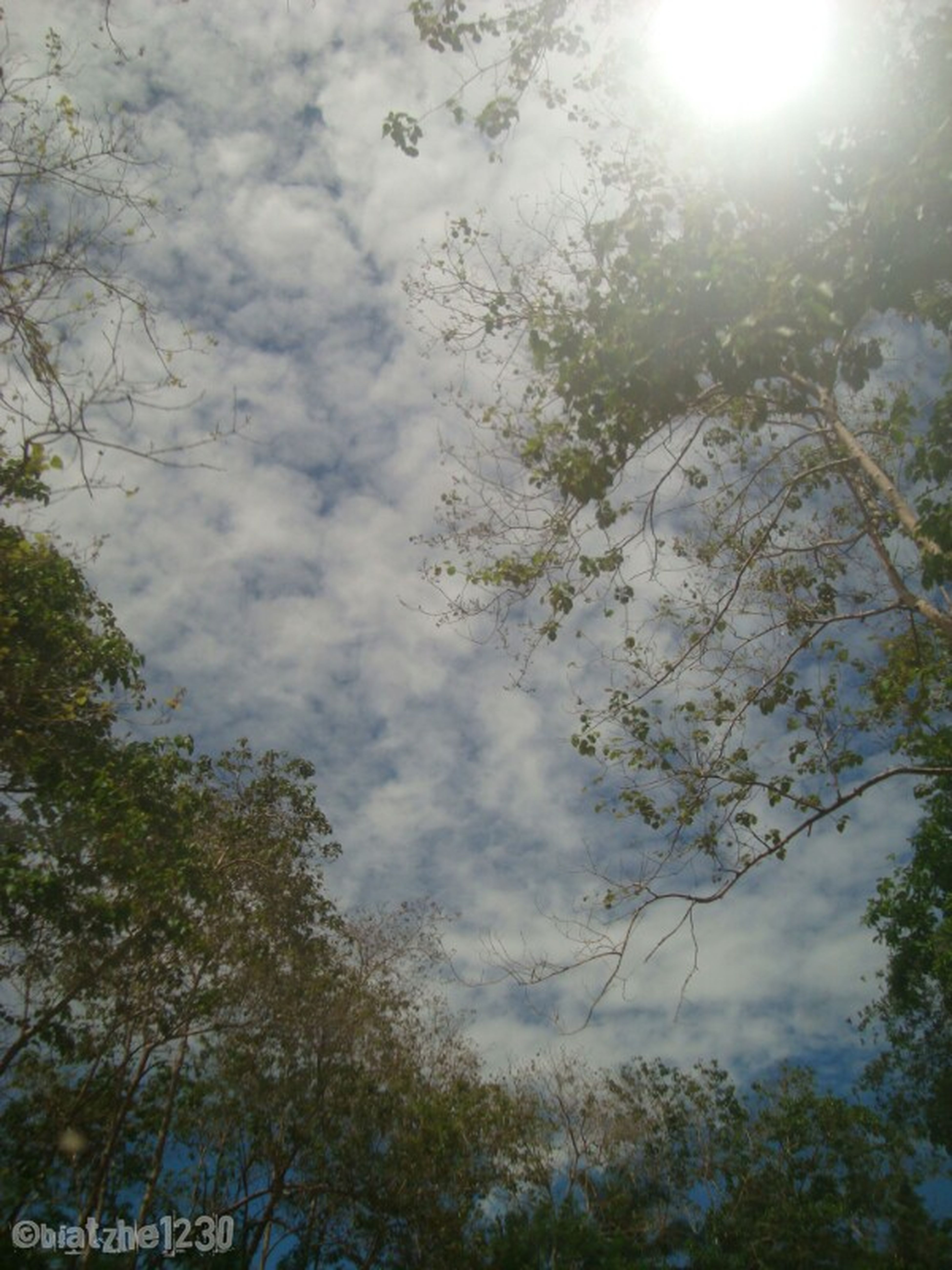 Nofilter#noedit EyeEm Nature Lover Eyeem Philippines Ontheroad
