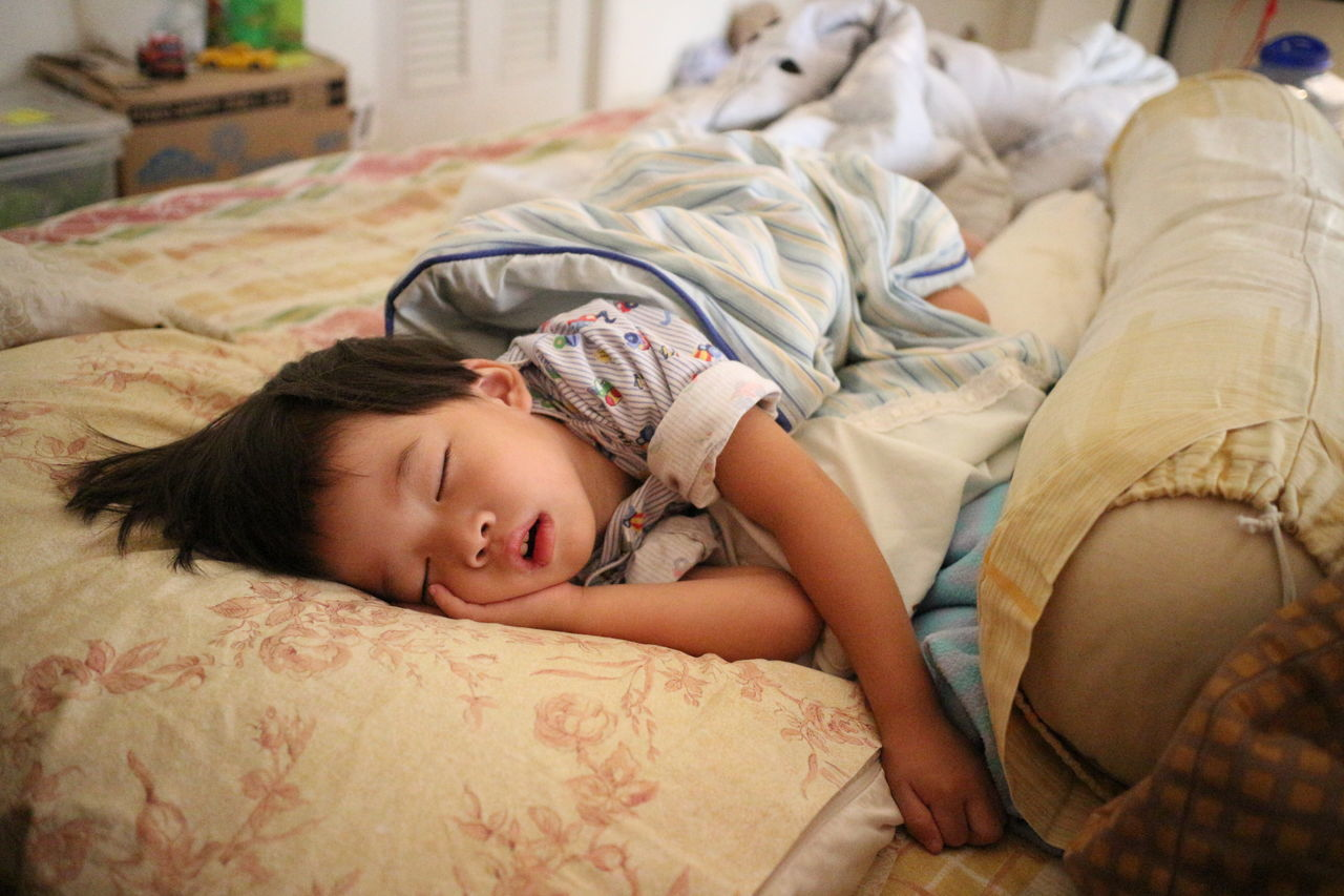 Adult Bed Bedroom Child Childhood Day Domestic Life Indoors  Kid Lying Down One Person People Pillow Portrait Relaxation Sleep Waking Up