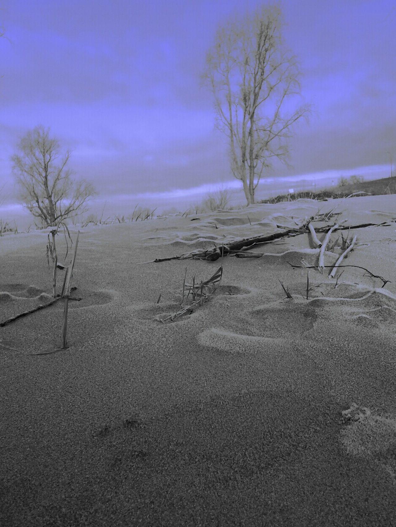 Messing Around Landscape Minimal