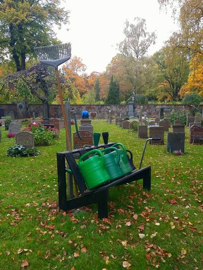 Graveyard Cemitery Kyrkogård Höst Autumn Autumn 2015 Rest In Peace Mobile Photography No Edit/no Filter Bench