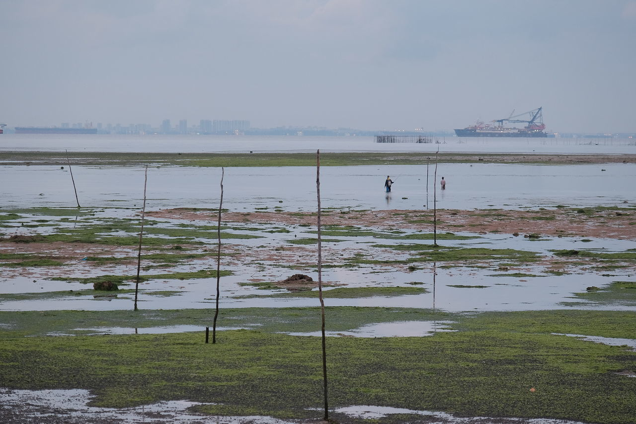 Border Cargo Ship Day High Angle View Low Tide Nature Outdoors Singapore Straits Tankers Water