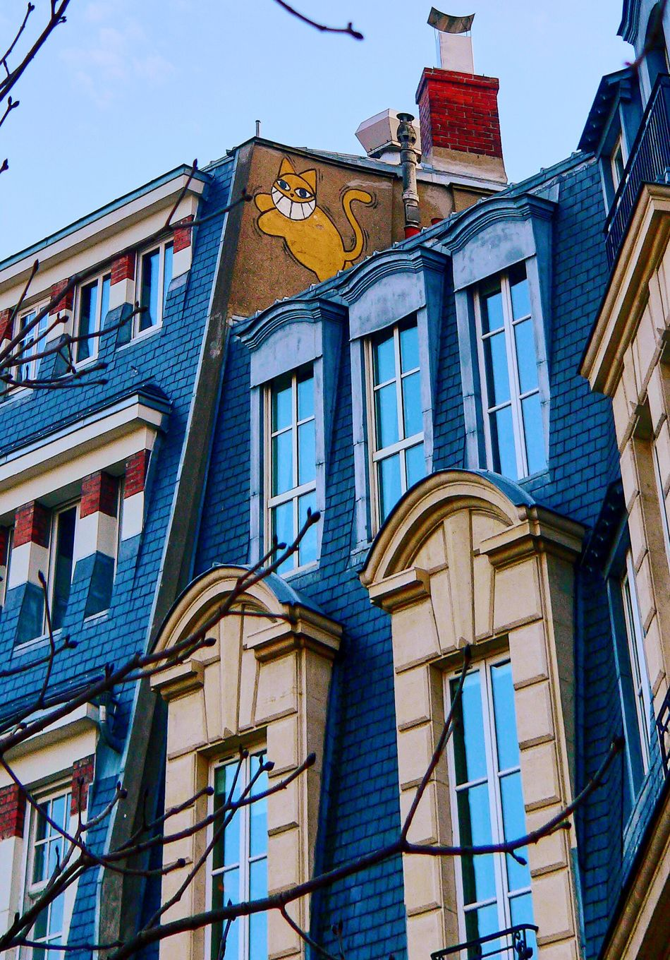 Building Exterior Architecture Built Structure Window Low Angle View Blue No People Outdoors Sky Day Streetphotography Street Art Street Art/Graffiti Cat Smiley Cat Cheshire Cheshire Cat Walk Paris Promenade Photooftheday