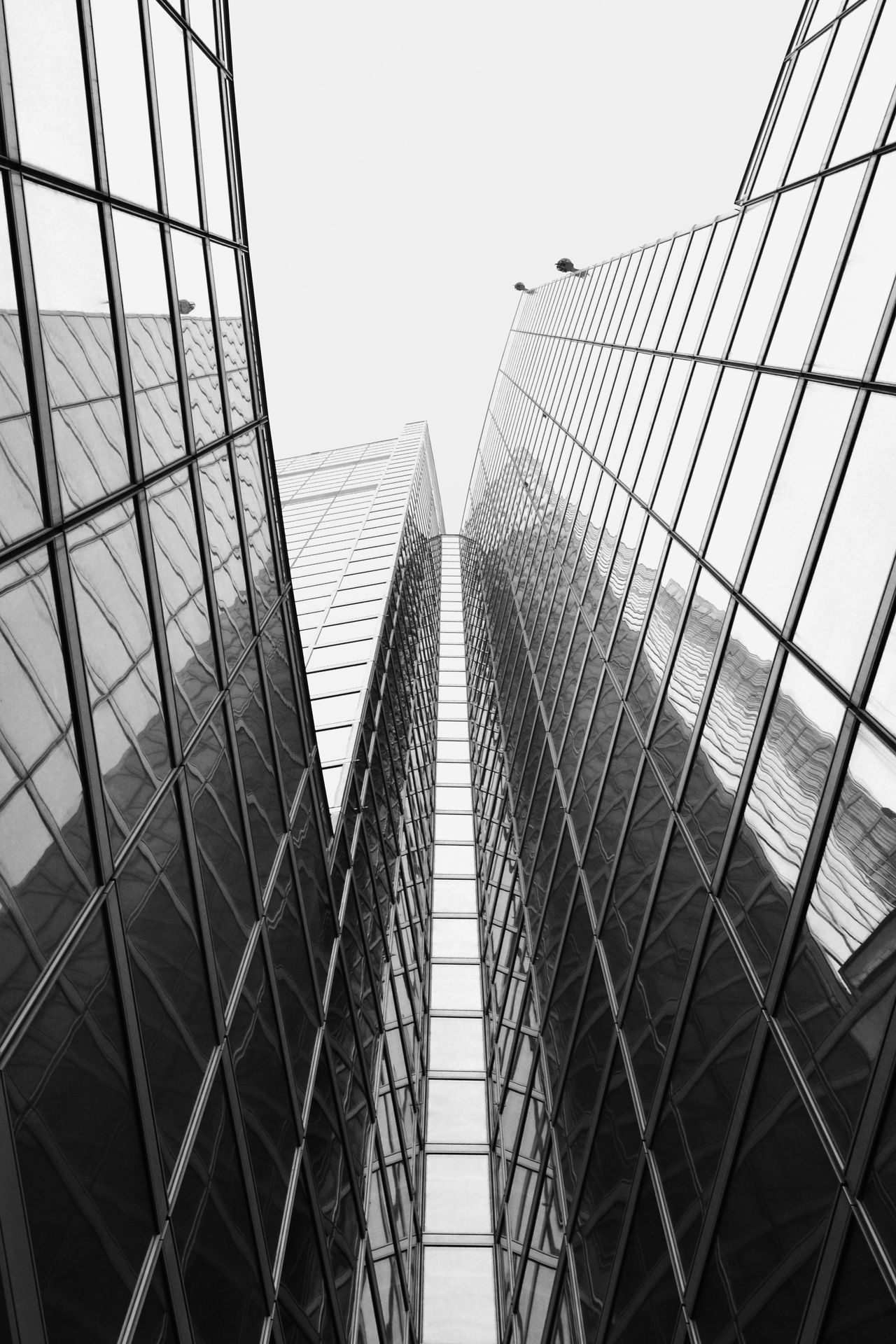 Skyscraper, 2013 Architecture Building Exterior Built Structure City Clear Sky Day EyeEm Best Shots Fine Art Photography Future Geometry High Key Italy Lines Looking Up Low Angle View Milan Milano Modern No People Outdoors Sky Skyscraper Windows The Architect - 2017 EyeEm Awards
