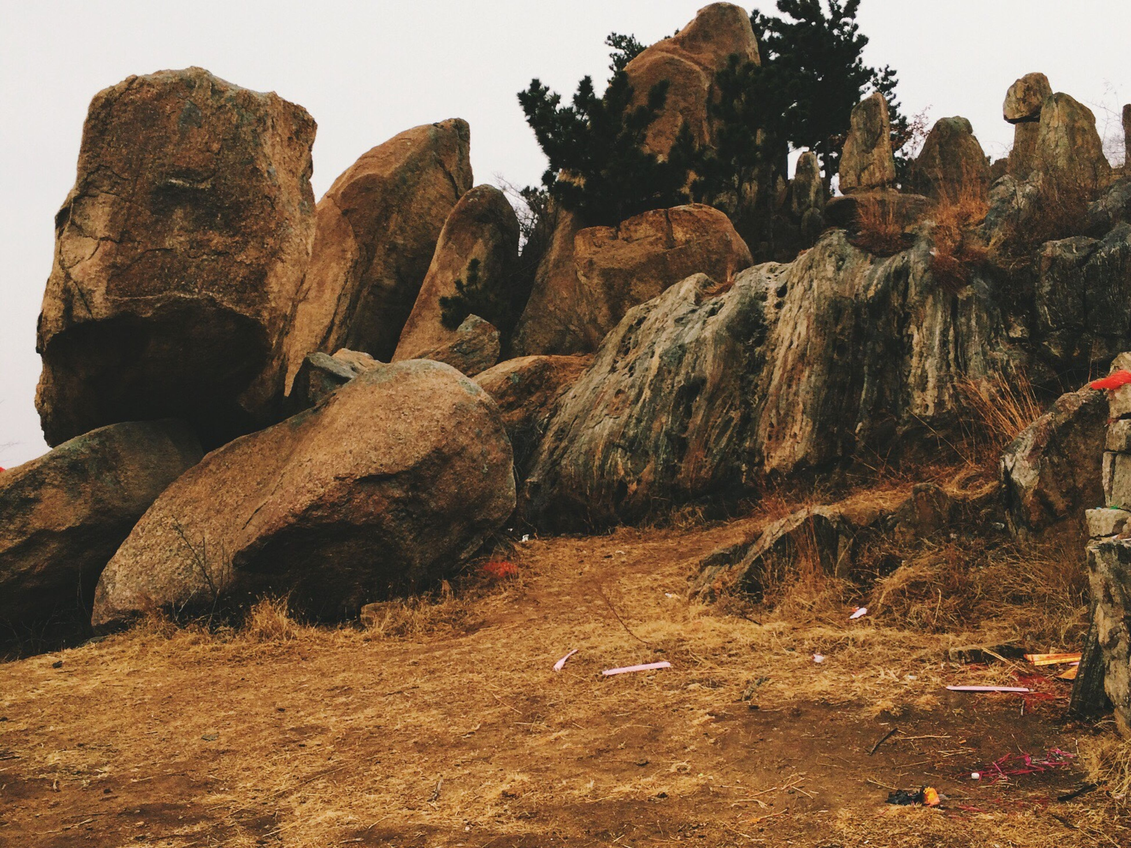 rock formation, rock - object, tranquility, nature, clear sky, sky, tranquil scene, landscape, low angle view, rock, geology, non-urban scene, tree, scenics, arid climate, eroded, cliff, desert, beauty in nature, day