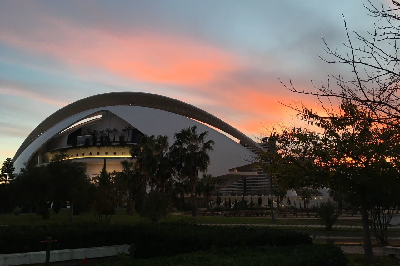Tree Architecture Built Structure Sunset Building Exterior Sky Cloud - Sky Travel Destinations Palm Tree Outdoors No People Nature Day Calatrava Valencia, Spain Jardin Del Turia