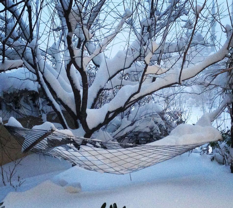 Nature Snow Cold Temperature Outdoors Hamak hamakkeyfi