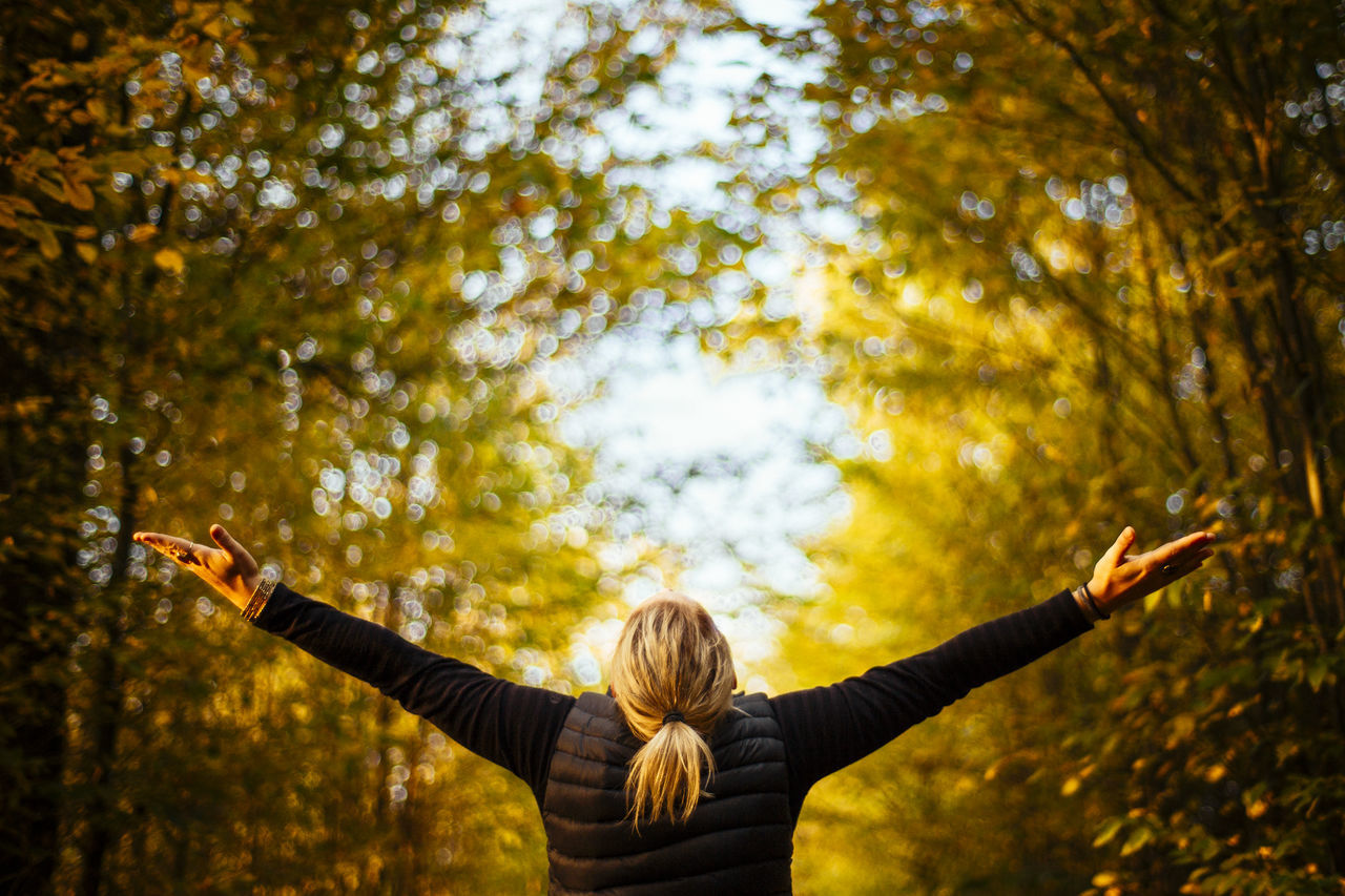 Arms Outstretched Arms Raised Autum Autumn Autumn Autumn Collection Autumn Colors Autumn Colours Autumn Leaves Autumnbeauty Autumn🍁🍁🍁 Beauty In Nature Embracing From Behind Happiness Human Arm Human Body Part Human Hand Nature One Person Outdoors Tree Young Adult