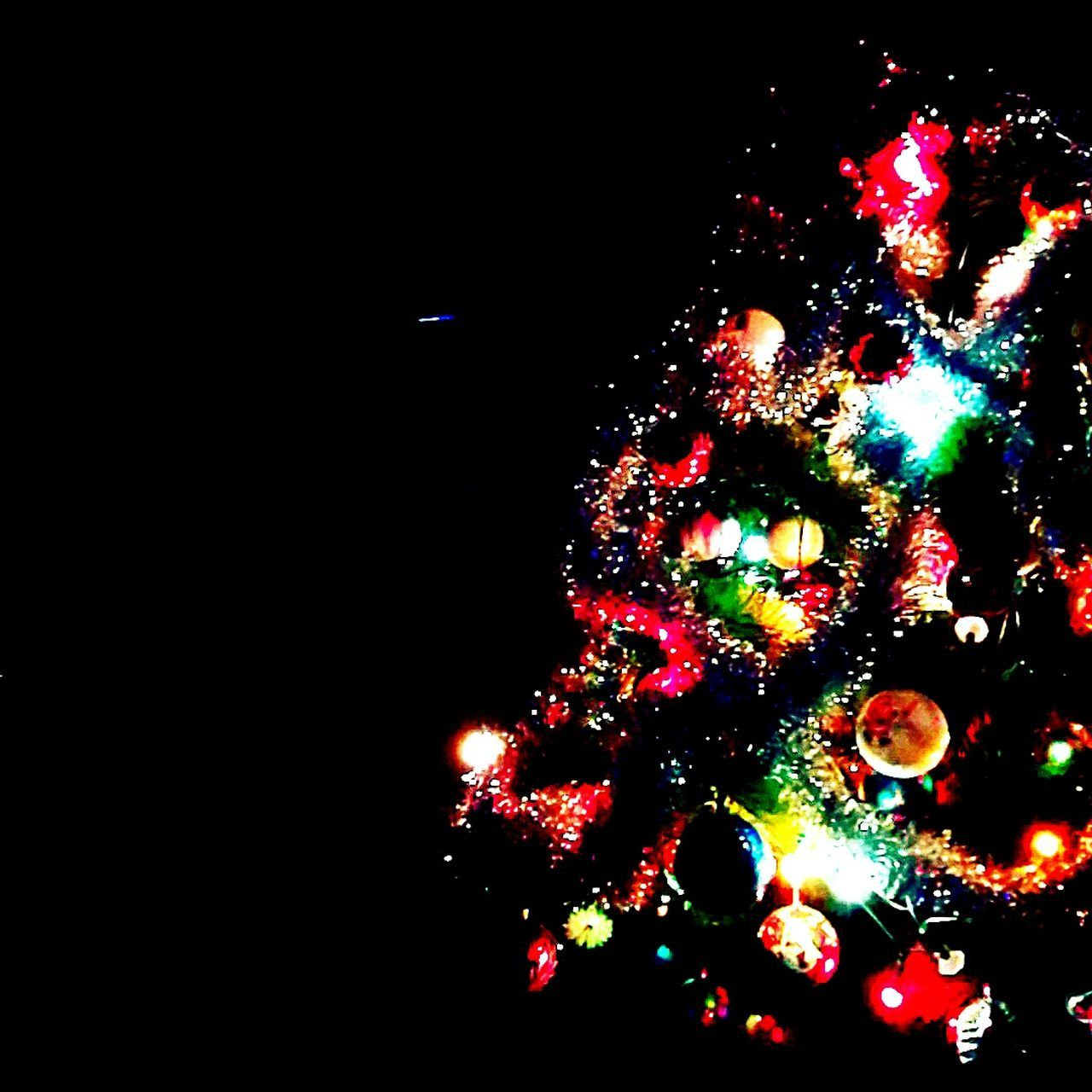 Last nights by the Christmas tree... Christmas Christmas Tree Celebration Illuminated Christmas Lights Tree Christmas Decoration Tradition Holiday - Event Christmas Ornament Celebration Event Cultures Night Indoors  Christmas Bauble Flower Songwriter Songwriting Canto Songs Fragility Italy🇮🇹 Red Festival Song
