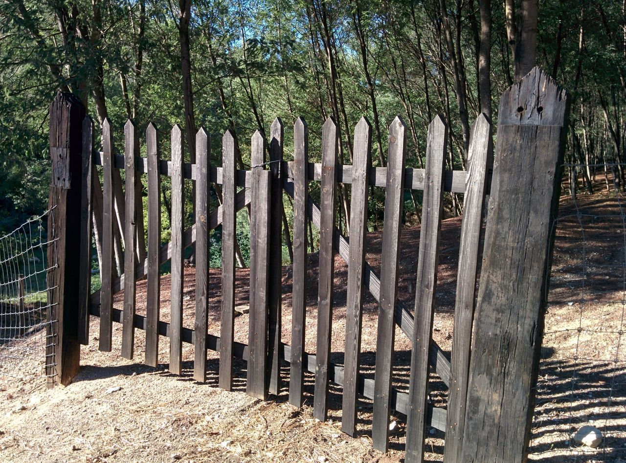 wood - material, security, protection, safety, gate, outdoors, tree, day, no people, wooden post