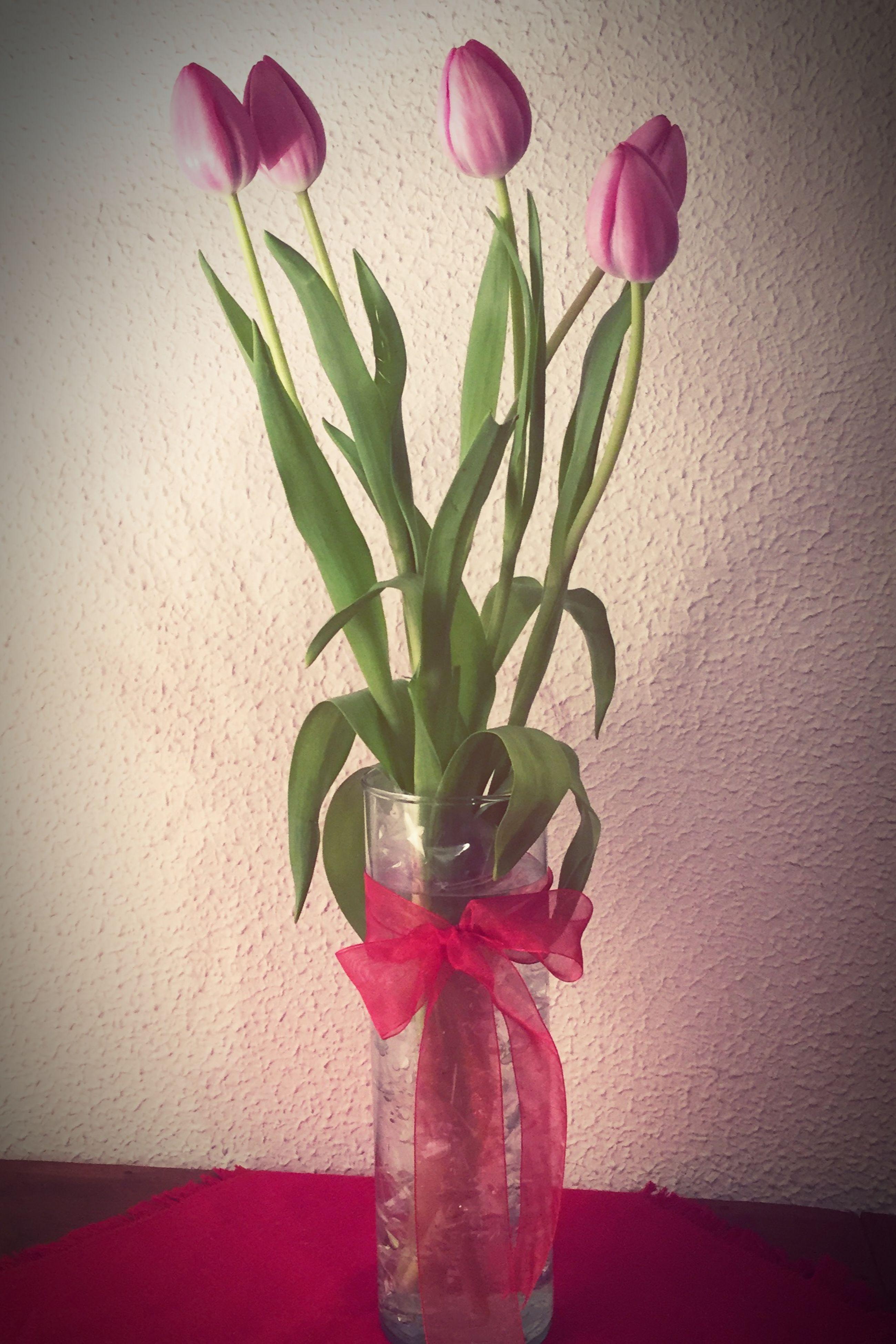 flower, petal, fragility, freshness, vase, indoors, flower head, growth, wall - building feature, plant, stem, rose - flower, leaf, beauty in nature, close-up, flower arrangement, home interior, nature, pink color, decoration