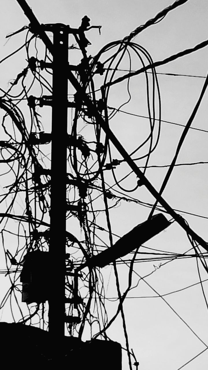 low angle view, silhouette, cable, outdoors, day, electricity, power supply, complexity, branch, technology, electricity pylon, sky, no people, bare tree, tree, nature, bird, animal themes