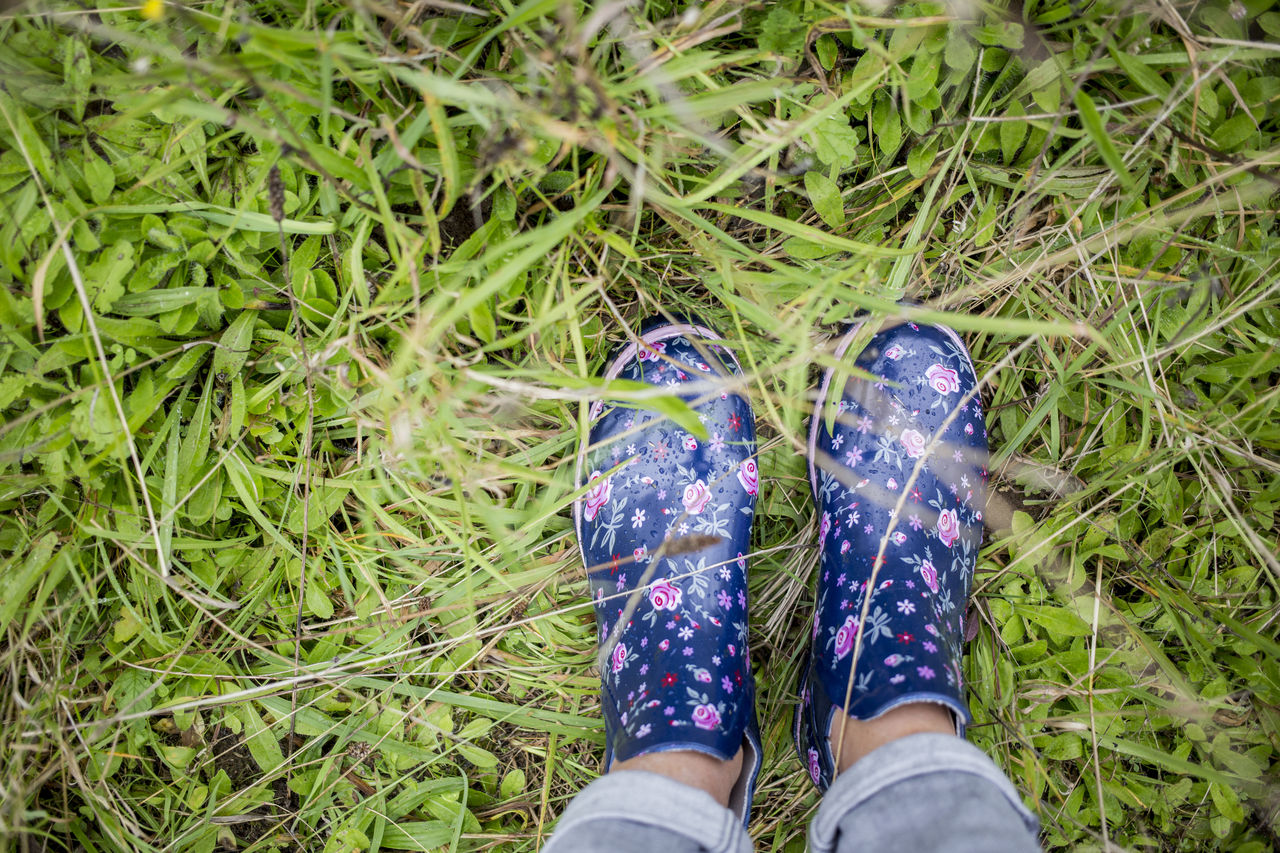 Beauty In Nature Blue Casual Clothing Close-up Day Field Flower Flower Print Grass Grassy Green Green Color Growth Leisure Activity Lifestyles Nature Outdoors Part Of Personal Perspective Plant Rubber Boots Standing Unrecognizable Person