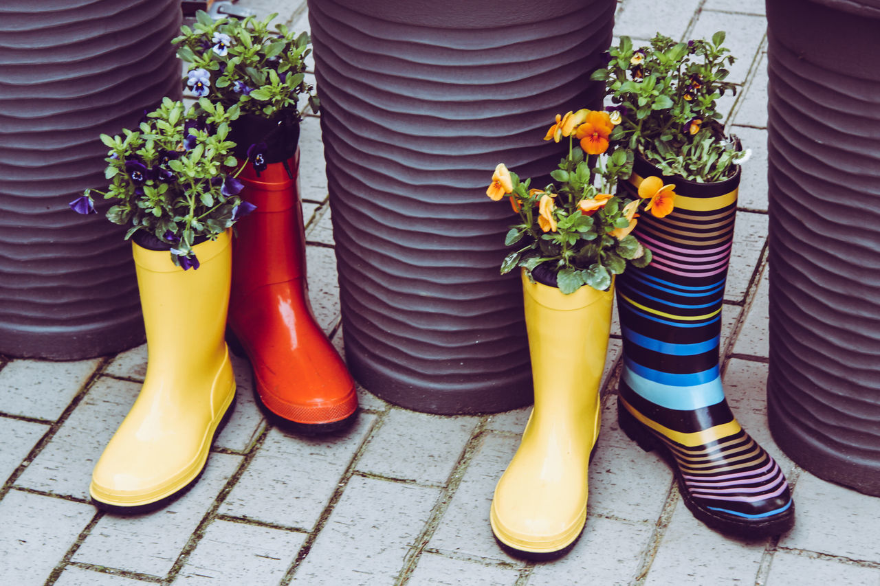 Arrangement Day Decoration Flowers Low Section Outdoors Pansies Red Lips Rubber Boots Shoe Shopping Street Sidewalk Street Stripes Pattern Yellow
