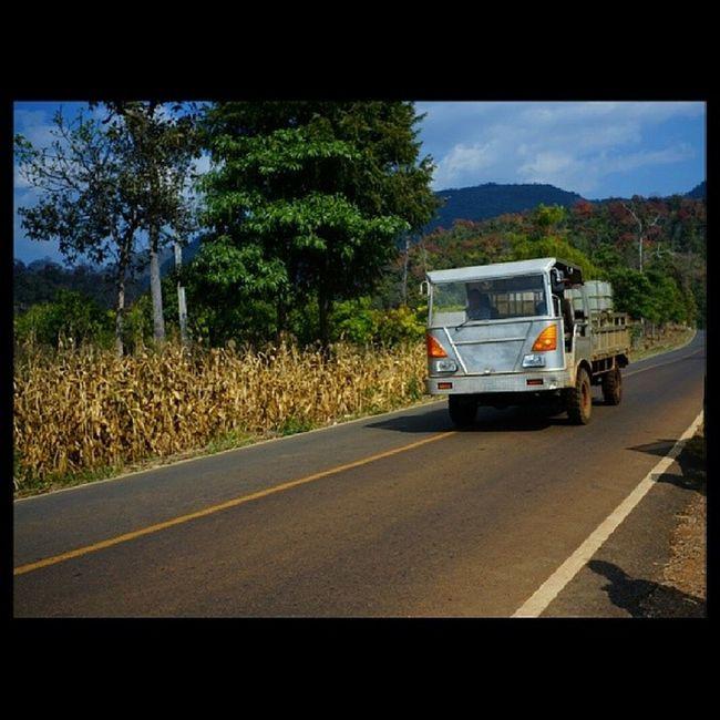 """บรรยากาศโดยรวมแล้วโอเคเลย ... Tripchiangmai Chiangmai ดอยอ่างขาง เส้นทาง _ _"""" เมื่อวาน"""