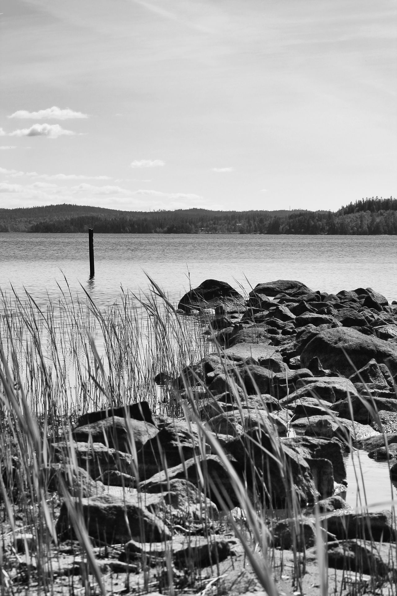 Beauty In Nature Black & White Black And White Day Exceptional Photographs EyeEmNewHere First Eyeem Photo Hello World Lake Lake View Lakescape Lakeshore Lakeside Nature Nature Outdoors Pier Reed Reeds Rock - Object Scenics Sea Sea And Sky Stone Water