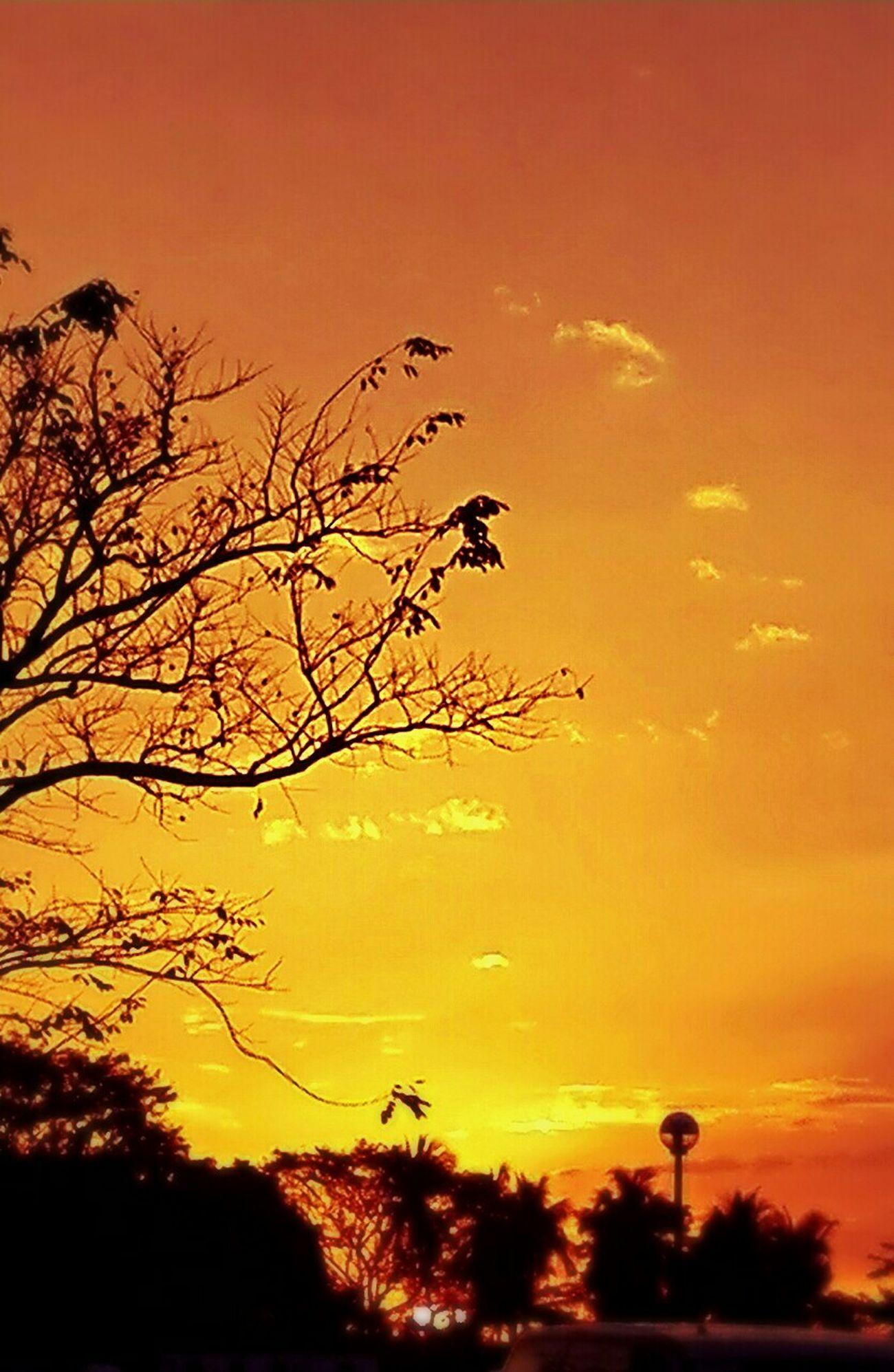 Enjoying Life Sunsetporn Sun ☀ Taking Photos Eye4photography  Eyemphilippines Bestclick Photooftheday
