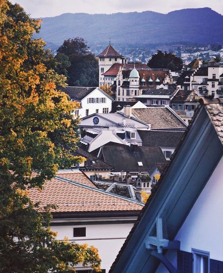 Building Exterior Architecture Built Structure House Tree Mountain Day Roof Outdoors No People Residential Building High Angle View Town Nature Sky Tiled Roof  Zurich, Switzerland Ethzurich Zürich Zürich My City Eth