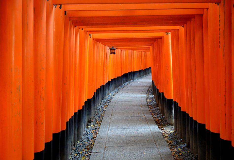 Beautiful stock photos of orange, Column, In A Row, Lane, Long