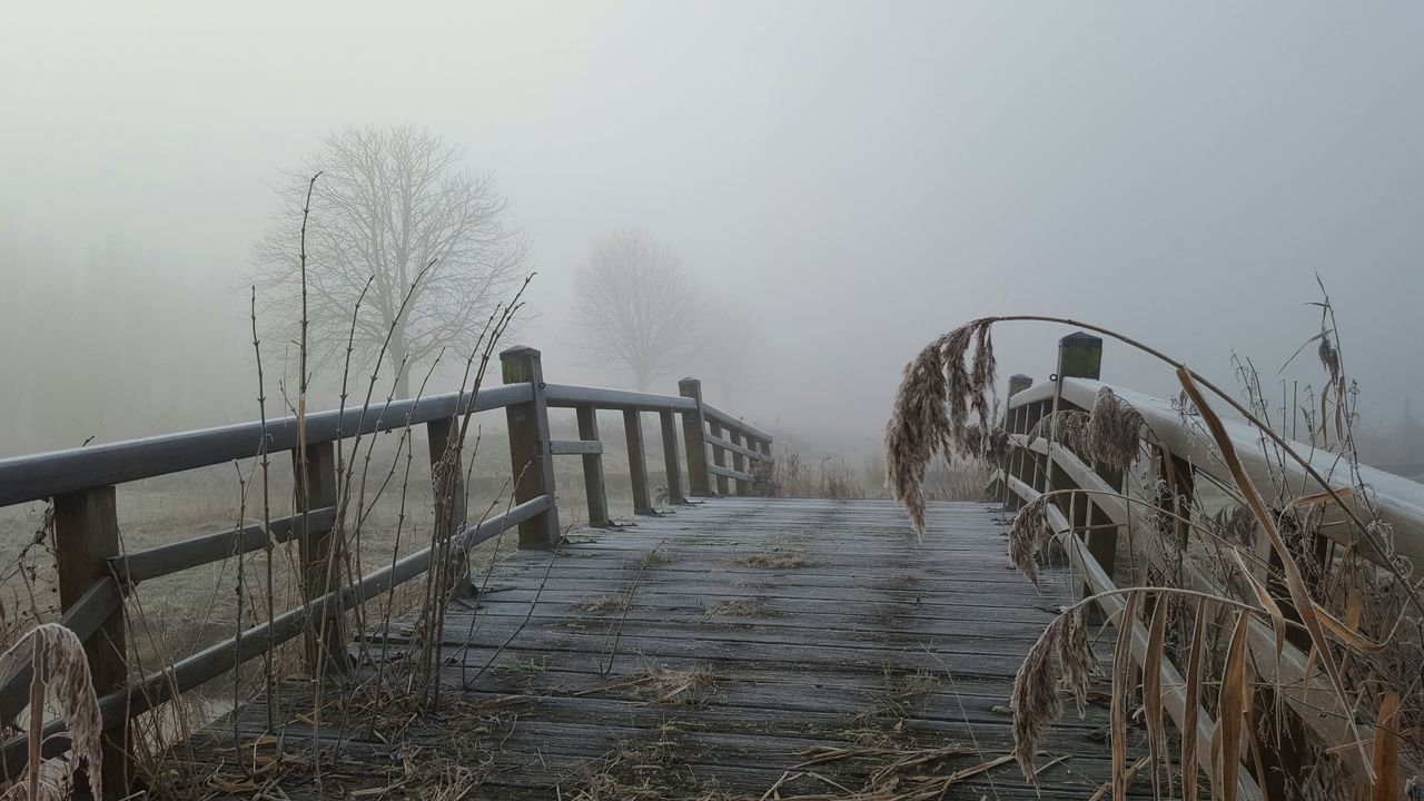fog, foggy, cold temperature, winter, weather, railing, bare tree, nature, day, outdoors, beauty in nature, no people, snow, scenics, sky