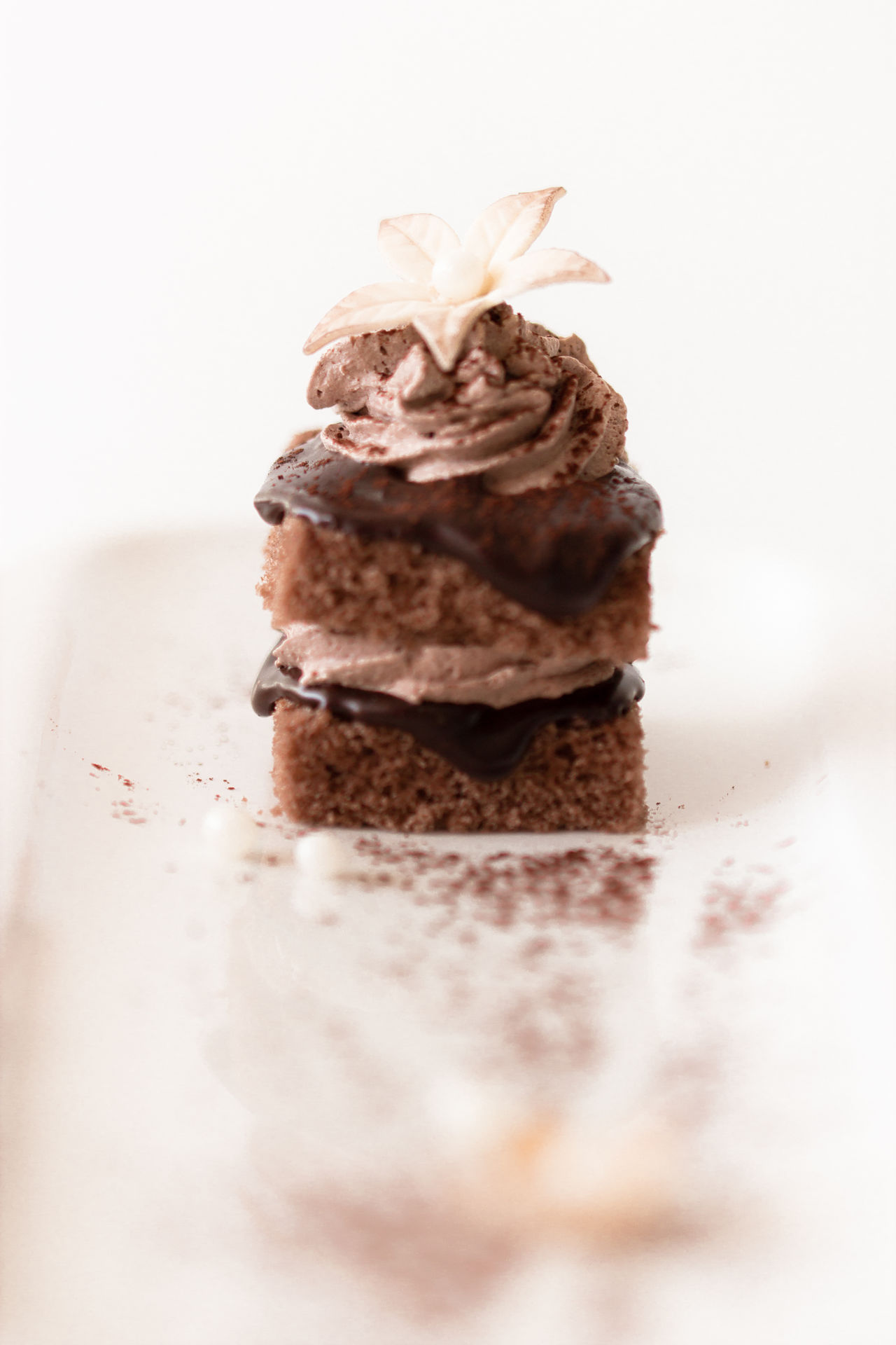 tiny chocolate cake Cake Chocolate Close-up Day Dessert Food Food And Drink Freshness Indoors  Indulgence No People Ready-to-eat Selective Focus Studio Shot Sweet Food White Background