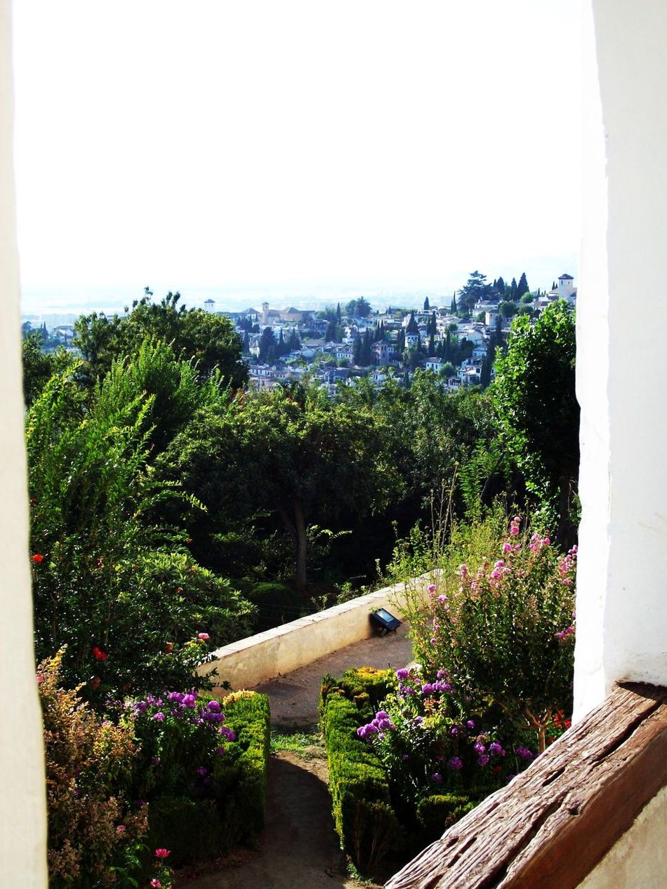 Andalucía Architecture Balcony Garden Balcony Shot Balcony View Building Exterior Clear Sky Day Freshness Garden Growth Landscape Nature No People Outdoors Peaceful Plant Sky SPAIN Sunny Day Tranquility Tree