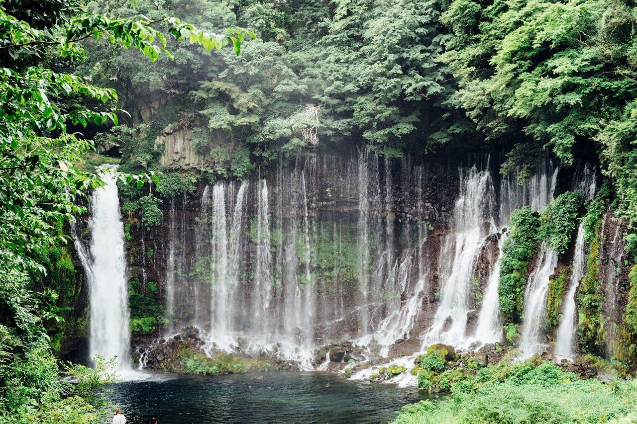 Water Falls Water Fall Shiraitonotaki Falls Shizuoka,japan Mt Fuji, Japan Japan Green And Water Fresh Air... Taking Photos Relaxing Hot Day Nature Waterfalls Green EyeEm Nature Lover July 2016 Outdoors