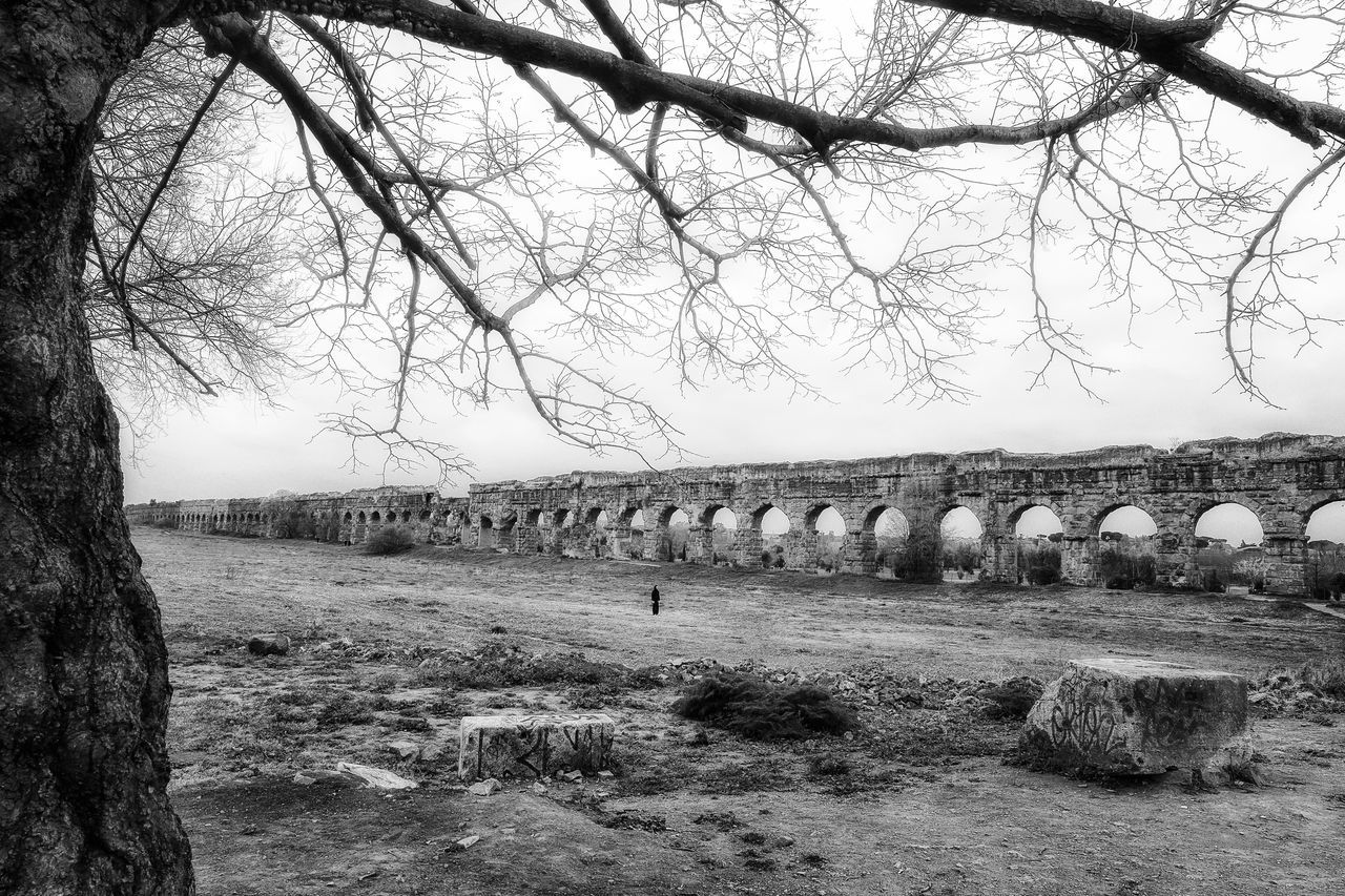 Ruins of an ancient Roman aqueduct, made of tuff blocks. Photographed on a cloudy morning of spring. Ancient Architecture Ancient Ruins Aqueduct Bare Tree Beauty In Nature Black And White Black And White Photography Day EyeEm Best Shots EyeEm Gallery Imperial Mood Natural Arch Nature No People Outdoors Roman Aqueduct Rome Italy Tranquility Tree
