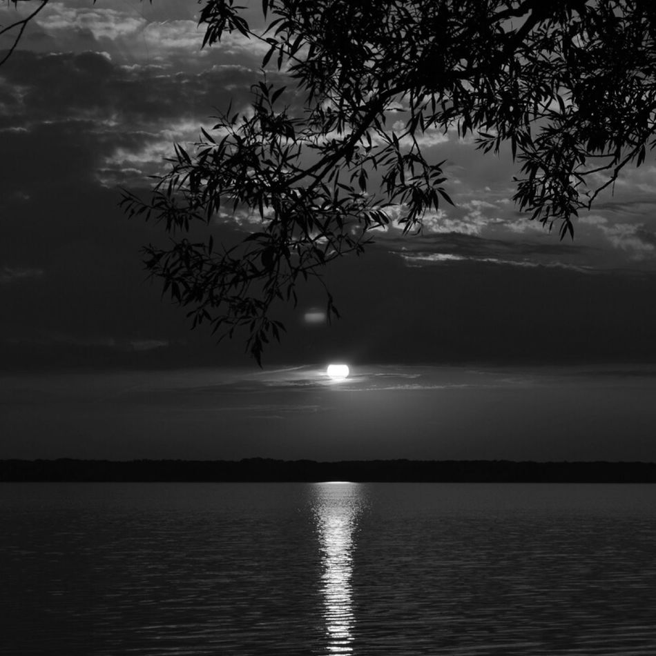 Pymatuning sunset in black and white Blackandwhite Pennsylvania Pymatuning Sunset