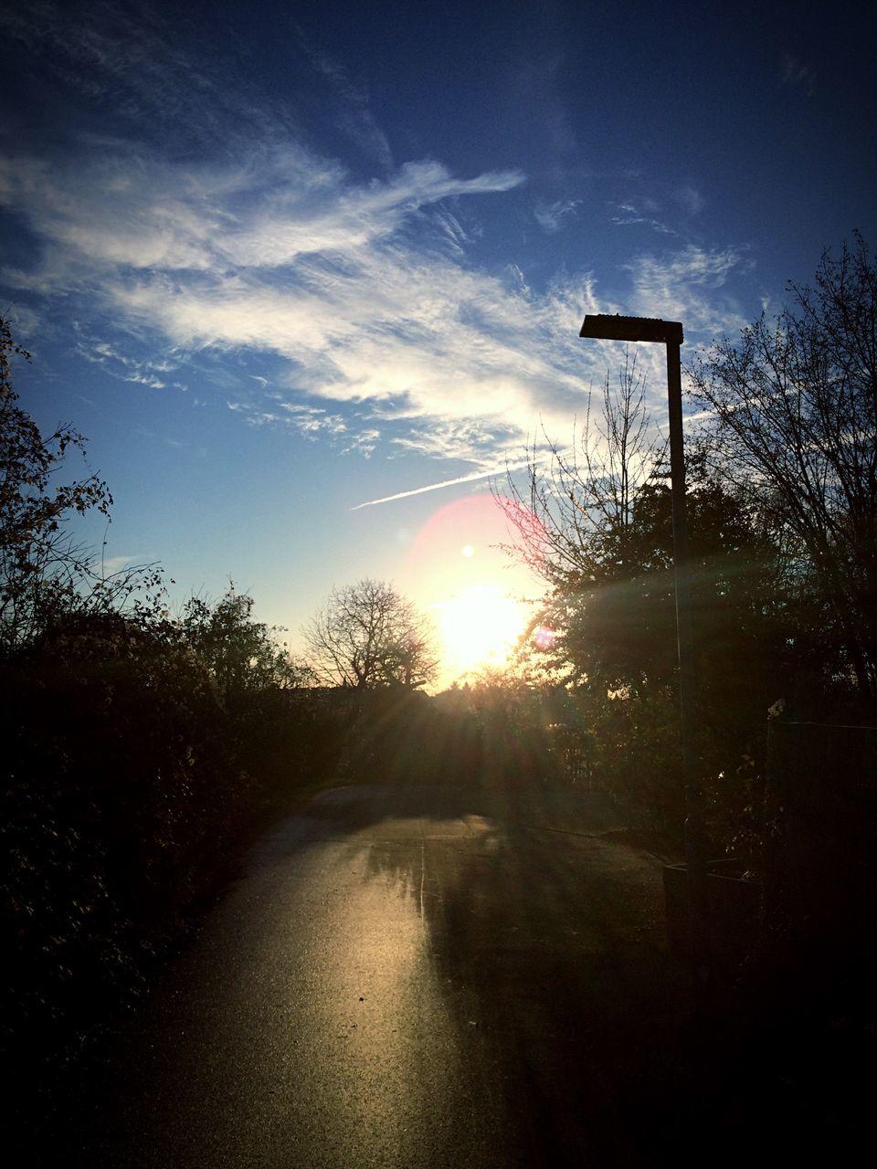 sunset, sunbeam, sunlight, silhouette, tree, sport, basketball hoop, sky, basketball - sport, sun, outdoors, nature, no people, scenics, day, court, beauty in nature