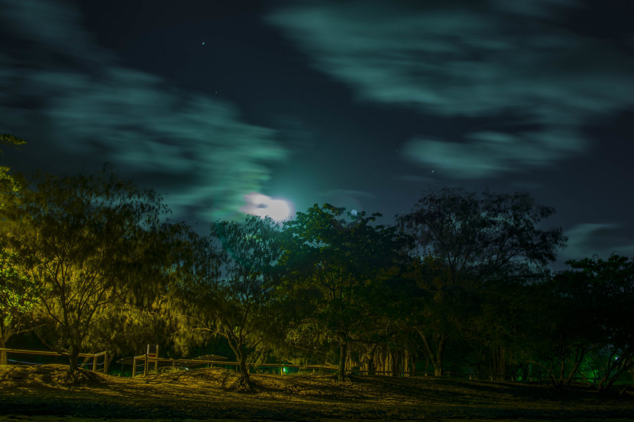 Atmospheric Mood Beach Cloudscape Dramatic Sky Moody Sky Moon Outdoors Sky Stars Tranquil Scene Tranquility Trees