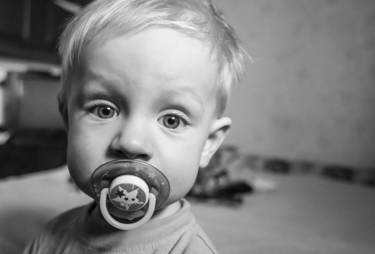 little caucasian boy with a pacifier Baby Boys Black And White Boy Caucasian Childhood Close-up Cute Day Elementary Age Focus On Foreground Front View Headshot Human Face Indoors  Innocence Leisure Activity Little Looking At Camera Pacifier Person Portrait Toddler  Unknown Gender