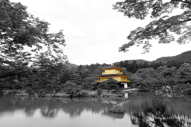 Traveling Blackandwhite Japan Kyoto Architecture Landscape