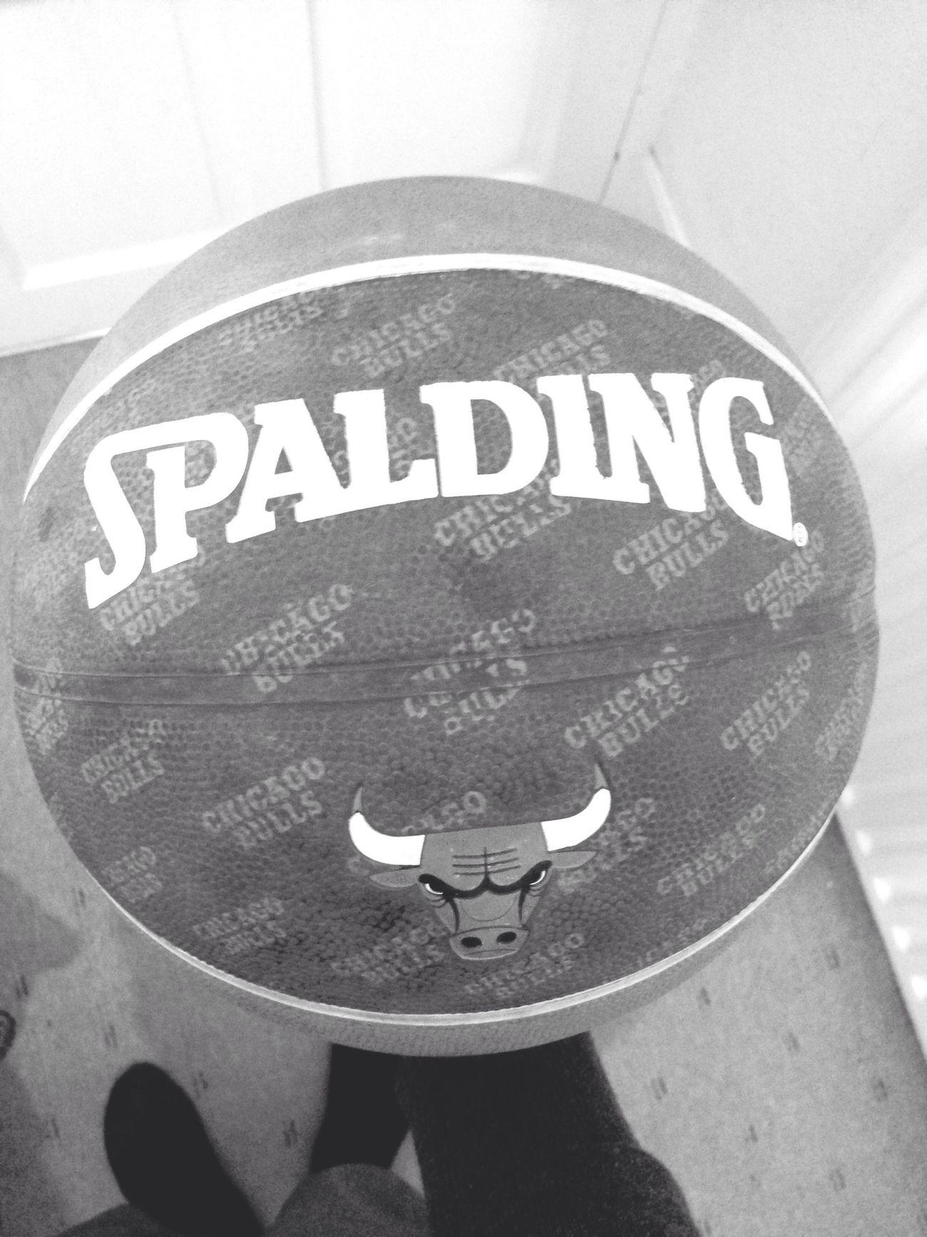 Basketball Chicago Bulls Michael Jordan Spalding