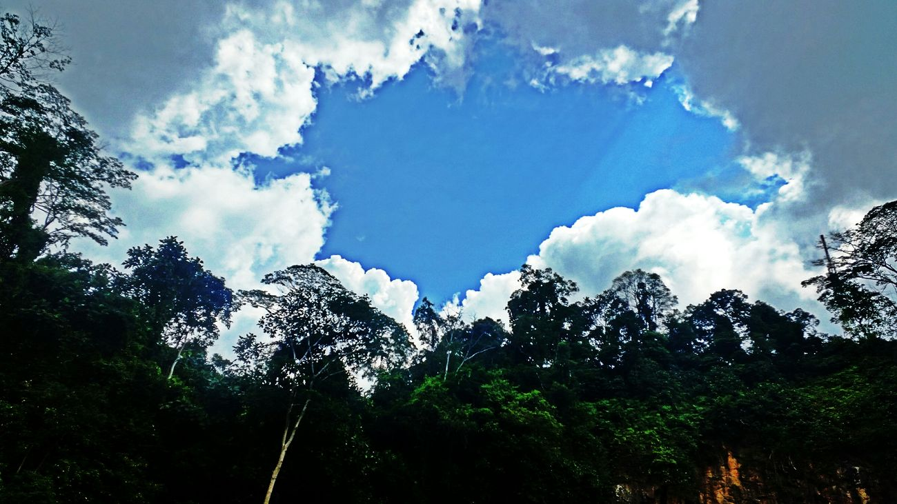 Enjoying The Sun Sky And Clouds Cloudsandsky Tree And Sky At The Park Hello World Love Is All Around