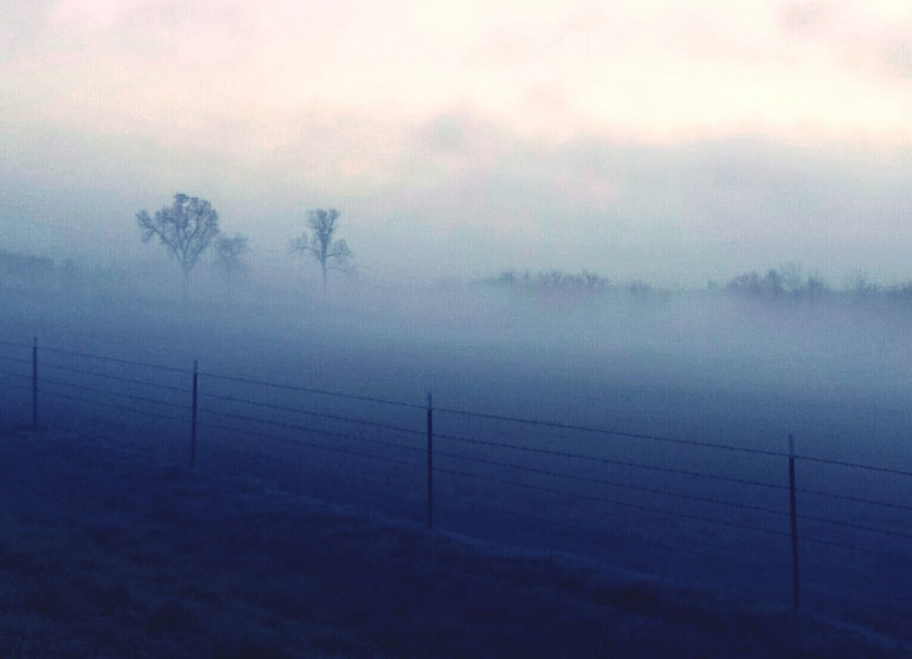 fog, weather, foggy, nature, tranquility, mist, beauty in nature, tranquil scene, no people, hazy, scenics, landscape, outdoors, sky, tree, water, day