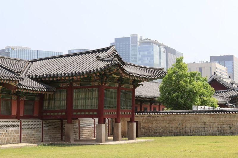 Architecture Built Structure Building Exterior Clear Sky Day No People Outdoors Tree Travel Destinations Grass Sky City 경복궁 대한민국 광화문 Gwanghwamun South Korea Gyeongbokgung