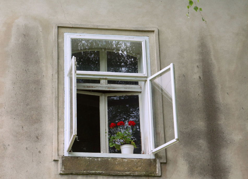 Architecture Building Exterior Day Flowers Flowers In Window No People Outdoors Window