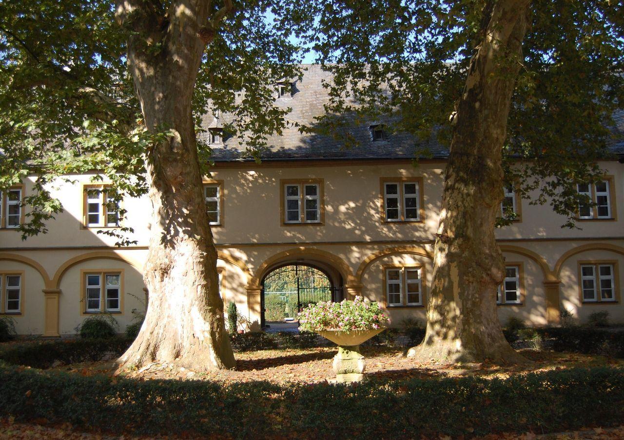Tree Building Exterior Architecture Built Structure No People Outdoors Nature Day Castle Gaibach Volkach Franken Schule Internat