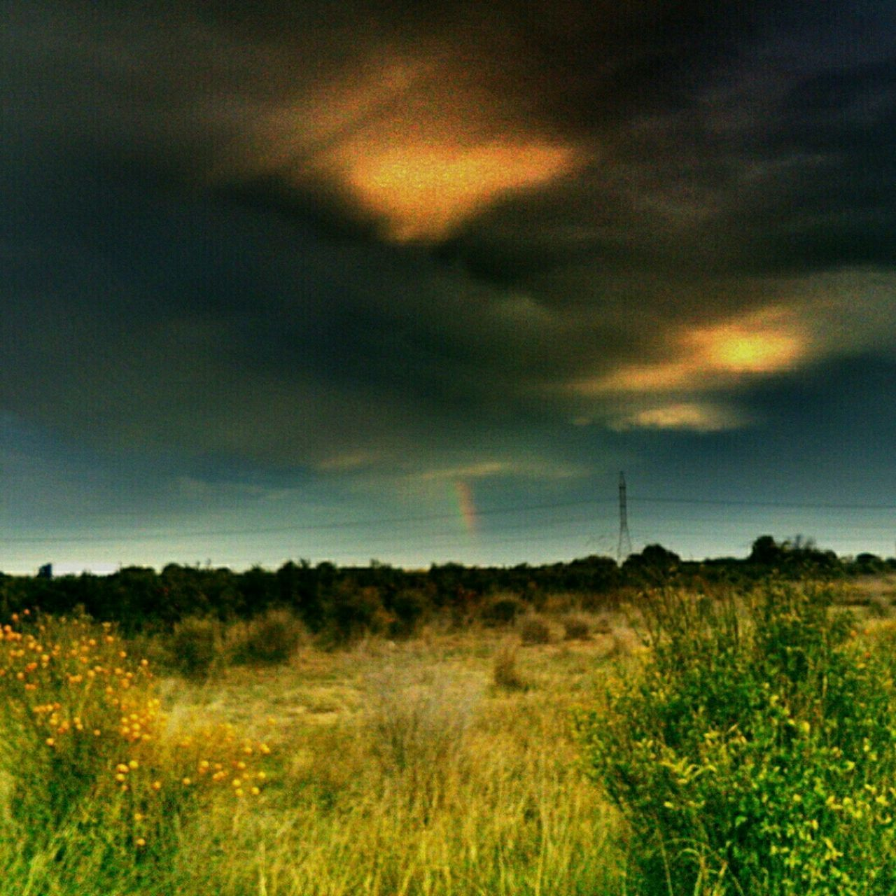 sky, landscape, tranquil scene, field, tranquility, beauty in nature, scenics, cloud - sky, nature, cloudy, growth, plant, non-urban scene, grass, idyllic, cloud, rural scene, weather, overcast, outdoors