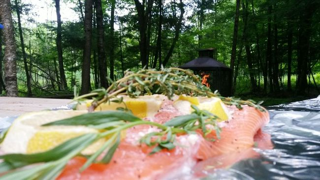 Showcase July Fish Camping Summer ☀ Fire Citron Souper