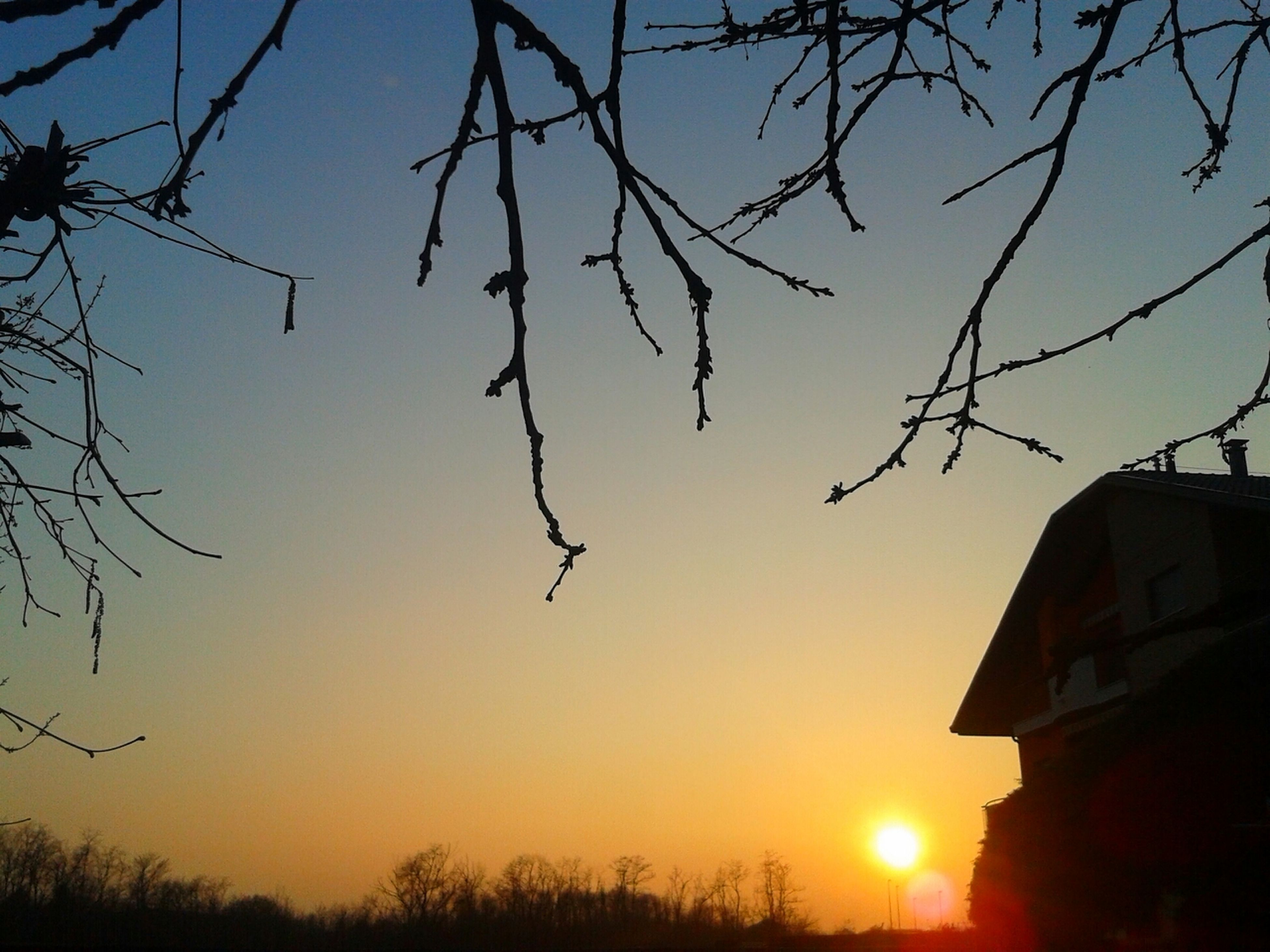 sunset, silhouette, bare tree, building exterior, tree, built structure, branch, architecture, orange color, sky, low angle view, sun, house, nature, beauty in nature, scenics, sunlight, clear sky, outdoors, tranquility