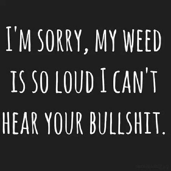 My response to people now lol Nogames Nobull Stonerlife